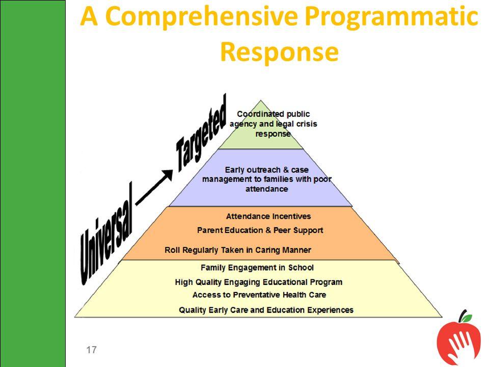 A Comprehensive Programmatic Response 17