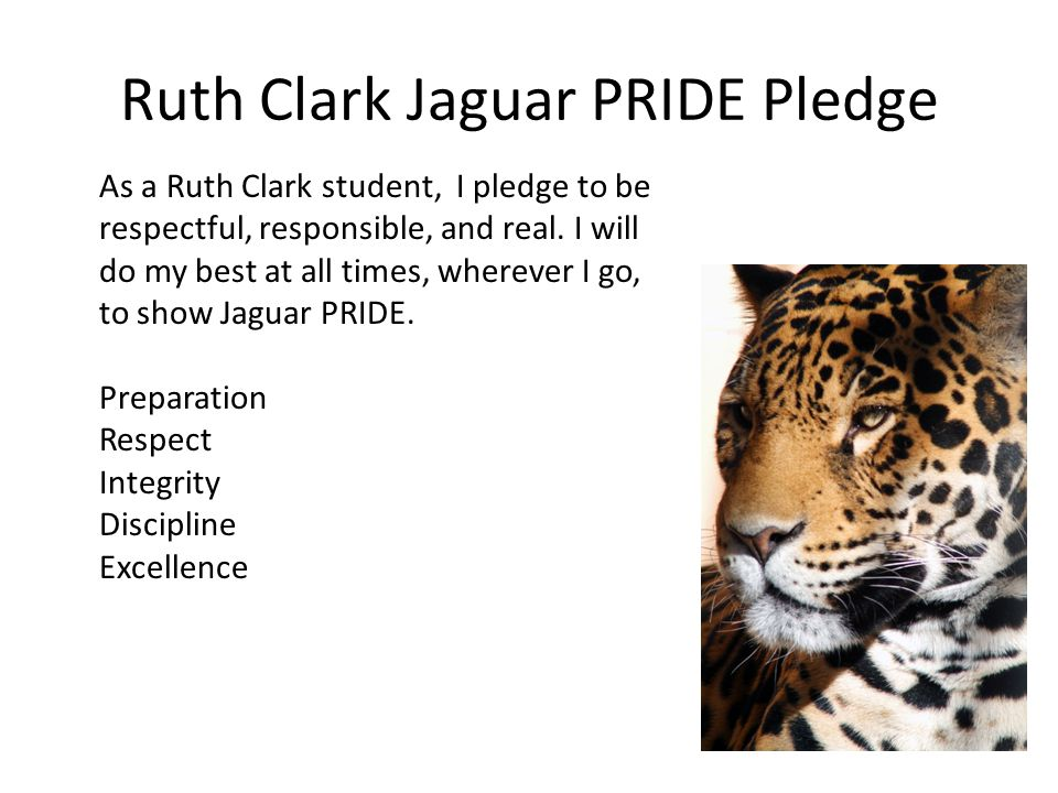 Ruth Clark Jaguar PRIDE Pledge As a Ruth Clark student, I pledge to be respectful, responsible, and real.