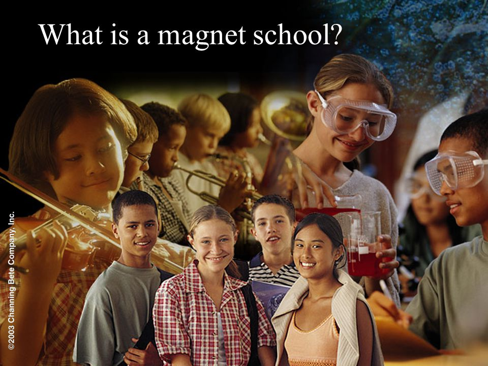 What is a magnet school