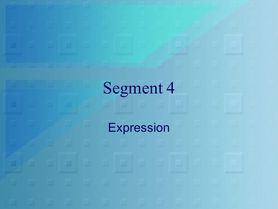 Segment 4 Expression