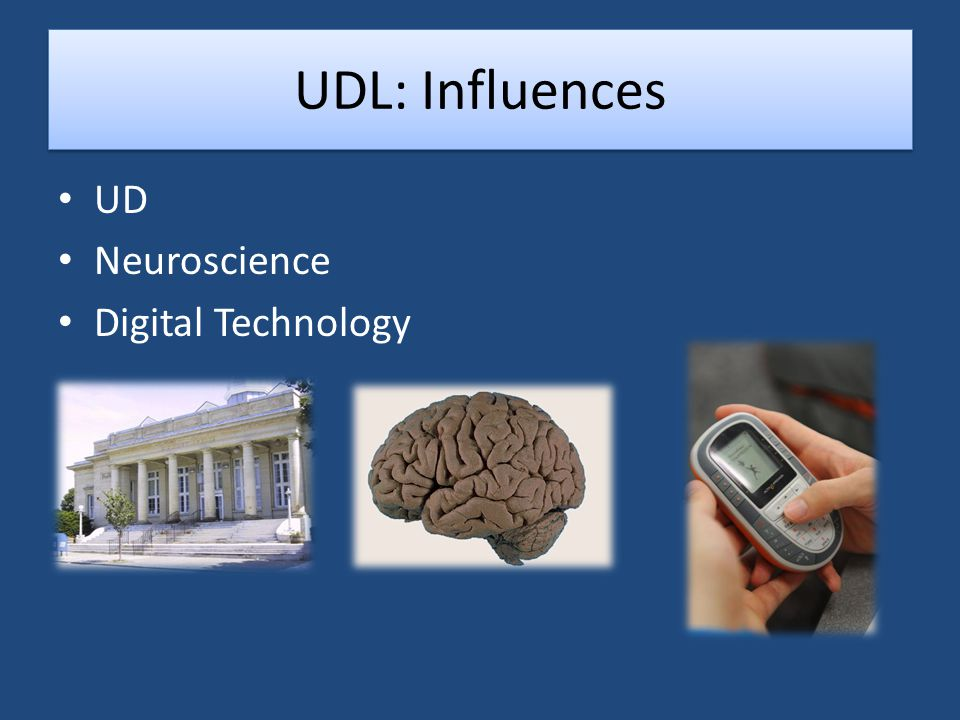 The UDL Guidelines What the PHYSICAL SPACE looks like What the PHYSICAL SPACE looks like What the TEACHER Is doing What the TEACHER Is doing What the STUDENT is doing What the STUDENT is doing