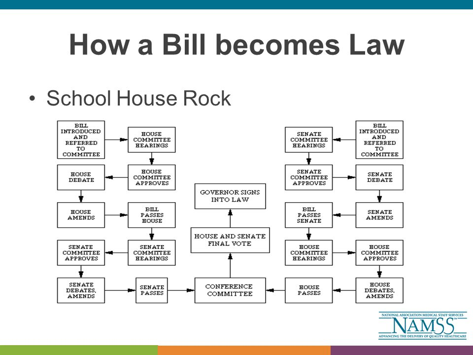 How a Bill becomes Law School House Rock