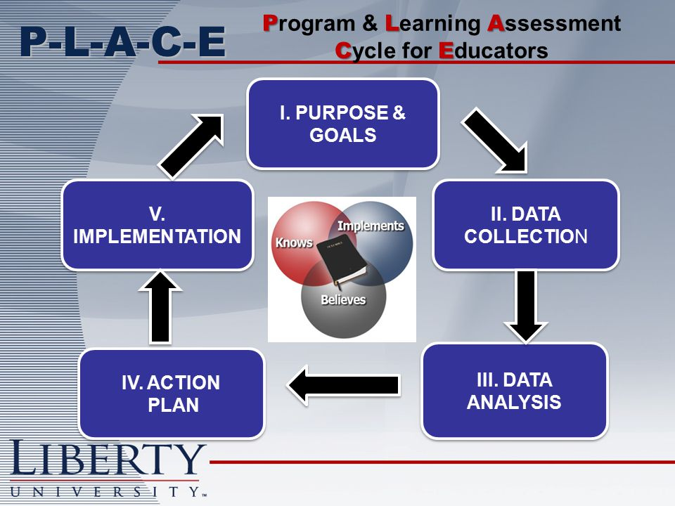 P-L-A-C-E I. PURPOSE & GOALS II. DATA COLLECTION III.