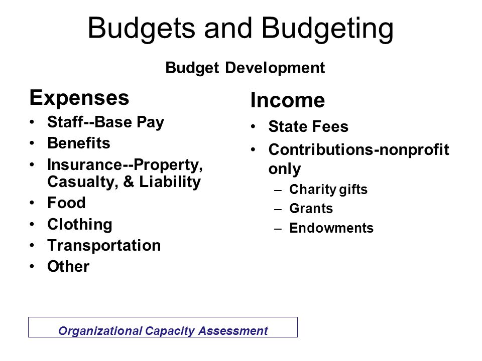 Budgets and Budgeting Budget Development Expenses Staff--Base Pay Benefits Insurance--Property, Casualty, & Liability Food Clothing Transportation Other Income State Fees Contributions-nonprofit only –Charity gifts –Grants –Endowments Organizational Capacity Assessment
