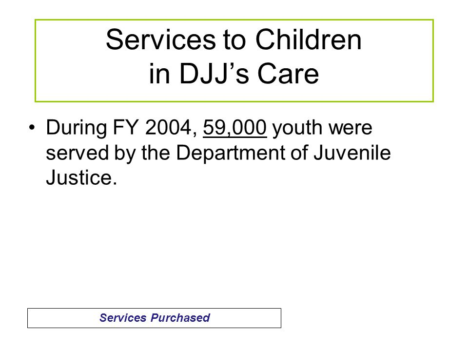 During FY 2004, 59,000 youth were served by the Department of Juvenile Justice.