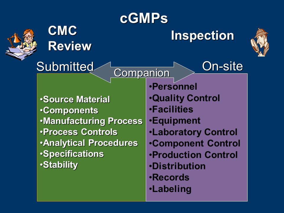 cGMPs cGMPs Source MaterialSource Material ComponentsComponents Manufacturing ProcessManufacturing Process Process ControlsProcess Controls Analytical ProceduresAnalytical Procedures SpecificationsSpecifications StabilityStability Personnel Quality Control Facilities Equipment Laboratory Control Component Control Production Control Distribution Records Labeling Inspection CMC Review Companion Submitted On-site
