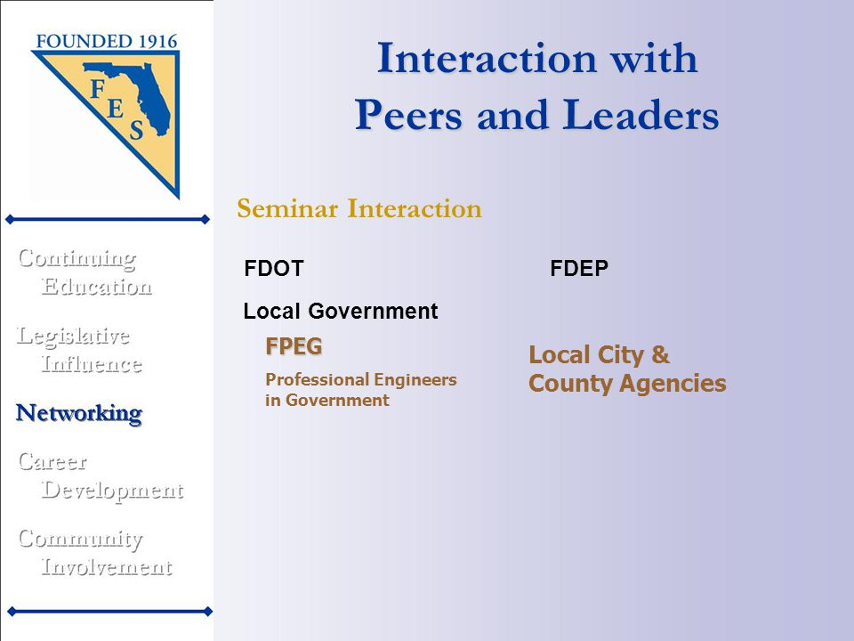 Local Government Interaction with Peers and Leaders Seminar Interaction FDEPFDOT FPEG Professional Engineers in Government Local City & County Agencies