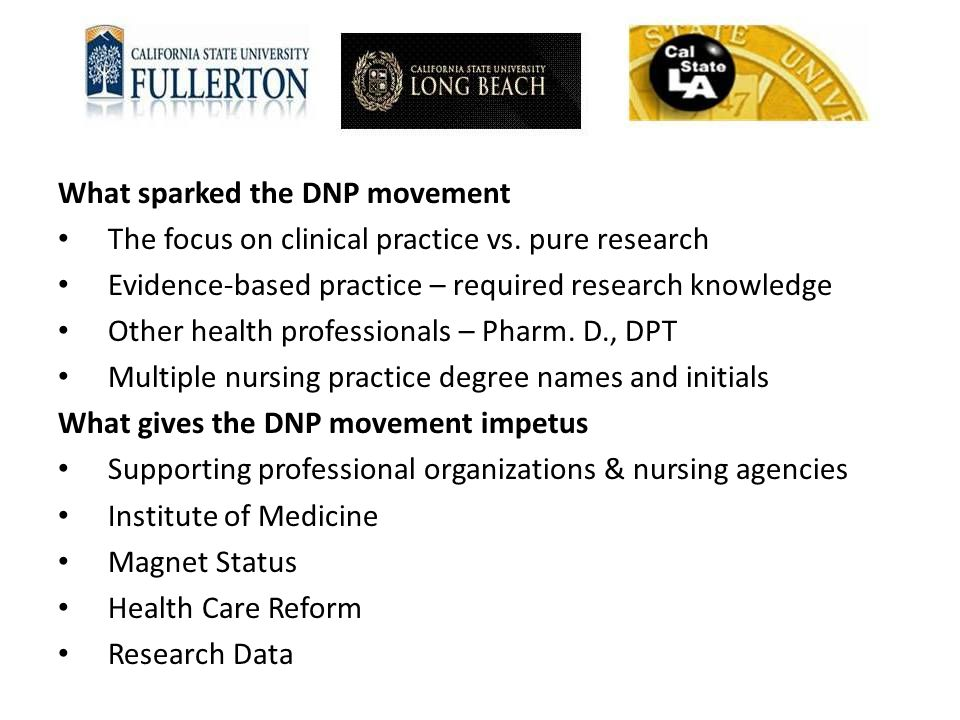 What sparked the DNP movement The focus on clinical practice vs. pure research Evidence-based practice – required research knowledge Other health prof