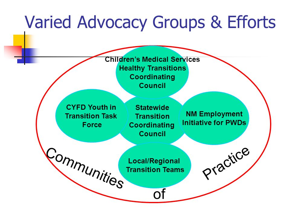 Statewide Transition Coordinating Council Varied Advocacy Groups & Efforts Communities of Practice Children's Medical Services Healthy Transitions Coordinating Council CYFD Youth in Transition Task Force NM Employment Initiative for PWDs Local/Regional Transition Teams