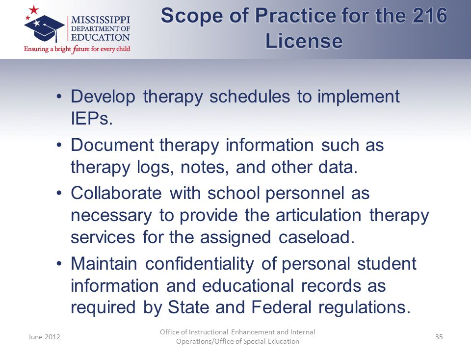Develop therapy schedules to implement IEPs. Document therapy information such as therapy logs, notes, and other data. Collaborate with school personn