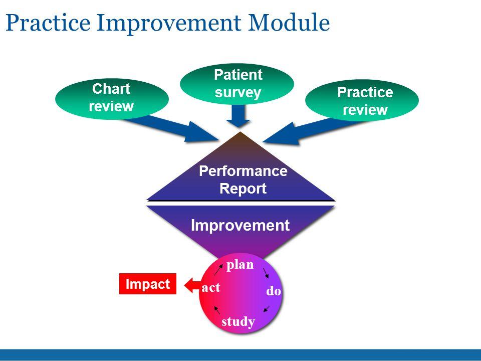 Performance Report Improvement Chart review Patient survey Impact Practice Improvement Module plan do study act Practice review