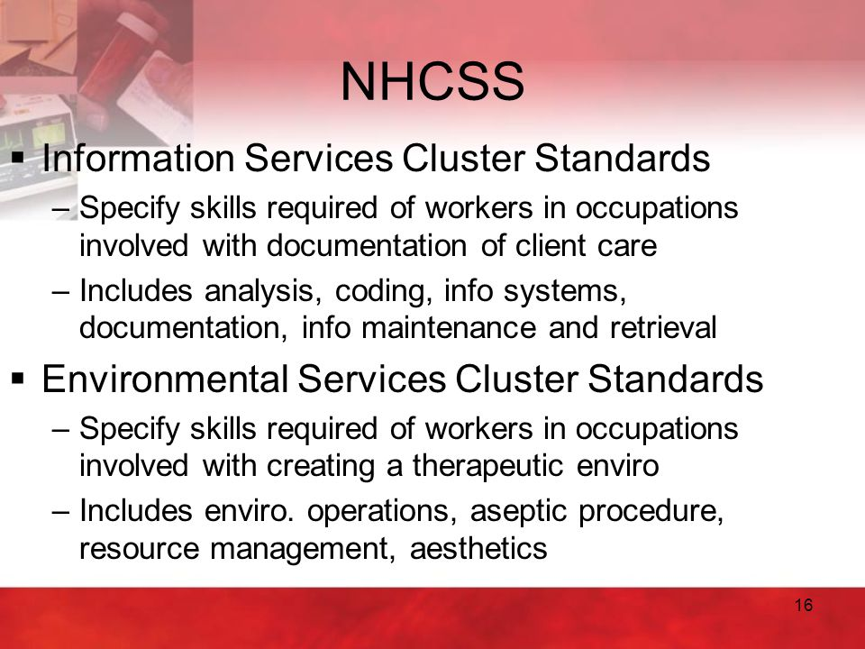 16 NHCSS  Information Services Cluster Standards –Specify skills required of workers in occupations involved with documentation of client care –Inclu