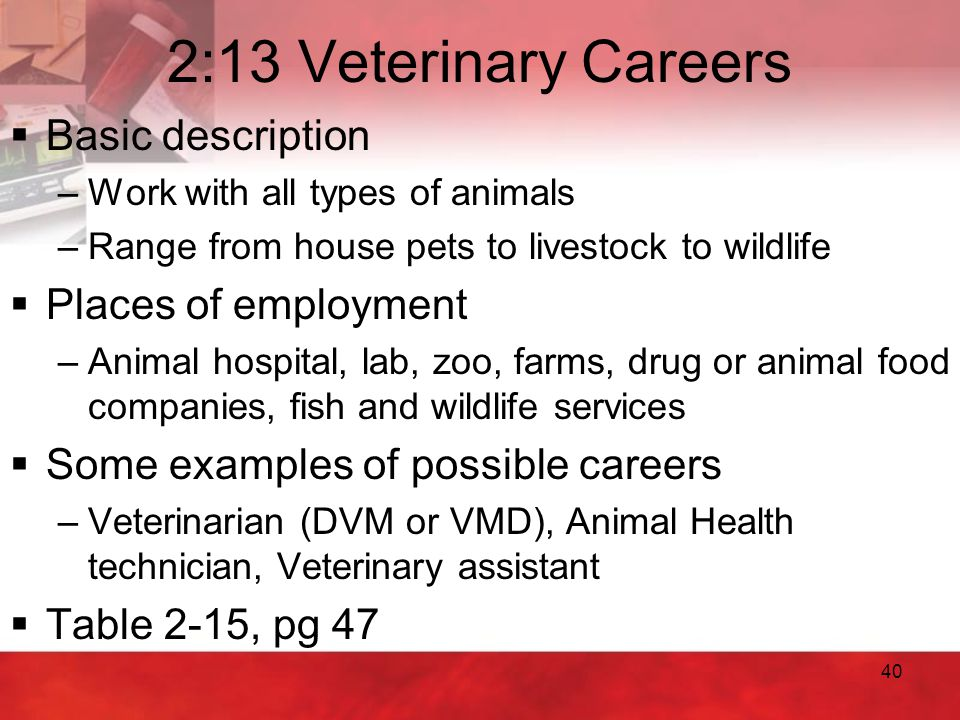 40 2:13 Veterinary Careers  Basic description –Work with all types of animals –Range from house pets to livestock to wildlife  Places of employment