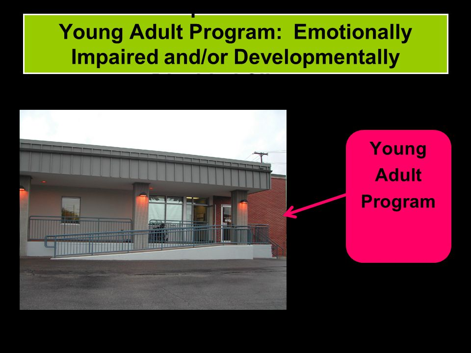 Population #3: Young Adult Program: Emotionally Impaired and/or Developmentally Disabled Clients.