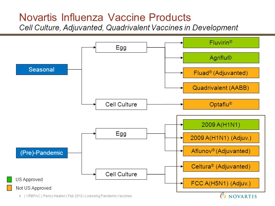 Seasonal (Pre)-Pandemic Egg Fluvirin ® Cell Culture 2009 A(H1N1) (Adjuv.) FCC A(H5N1) (Adjuv.) Optaflu ® Quadrivalent (AABB) Agriflu® Novartis Influenza Vaccine Products Cell Culture, Adjuvanted, Quadrivalent Vaccines in Development US Approved Not US Approved 2009 A(H1N1) 4 | VRBPAC | Penny Heaton | Feb 2012 | Licensing Pandemic Vaccines Fluad ® (Adjuvanted) Egg Cell Culture Aflunov ® (Adjuvanted) Celtura ® (Adjuvanted)