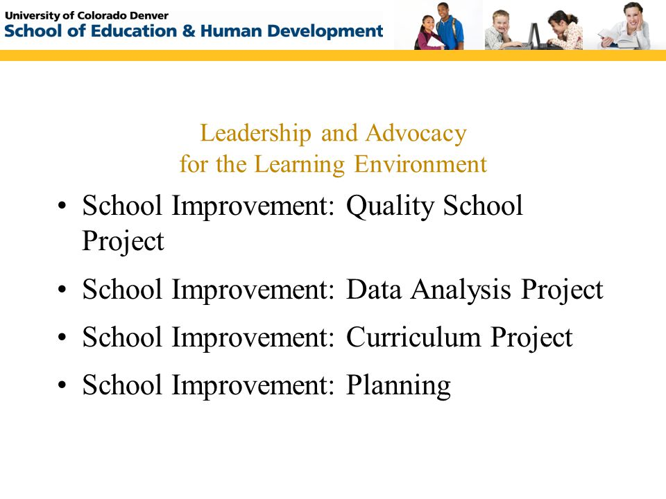 Leadership and Advocacy for the Learning Environment School Improvement: Quality School Project School Improvement: Data Analysis Project School Impro
