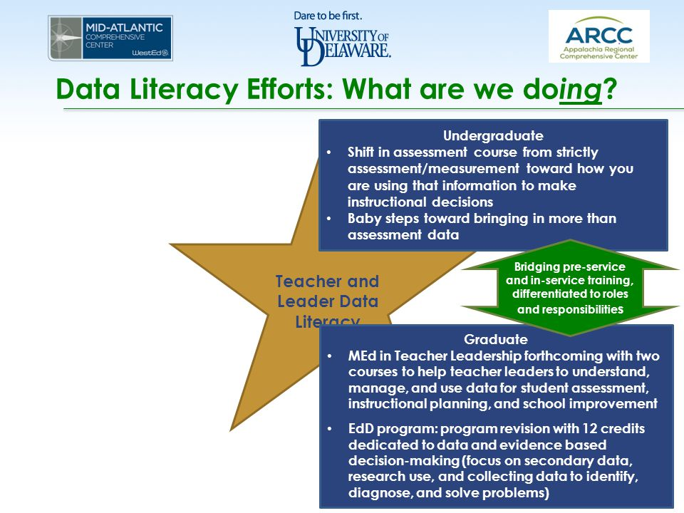 Data Literacy Efforts: What are we do ing ? Teacher and Leader Data Literacy Undergraduate Shift in assessment course from strictly assessment/measure