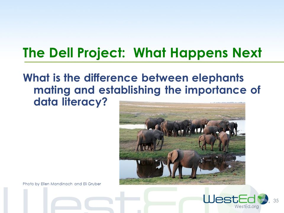 WestEd.org The Dell Project: What Happens Next What is the difference between elephants mating and establishing the importance of data literacy.