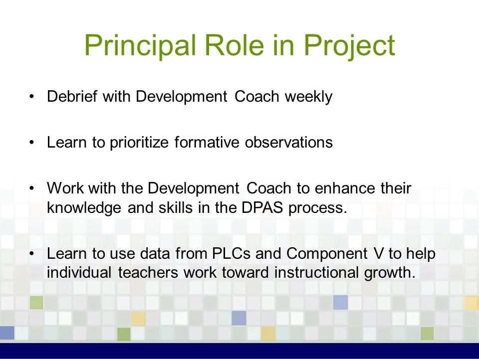 Principal Role in Project Debrief with Development Coach weekly Learn to prioritize formative observations Work with the Development Coach to enhance