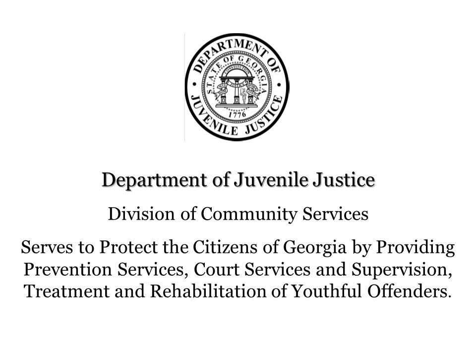 Department of Juvenile Justice Division of Community Services Serves to Protect the Citizens of Georgia by Providing Prevention Services, Court Servic
