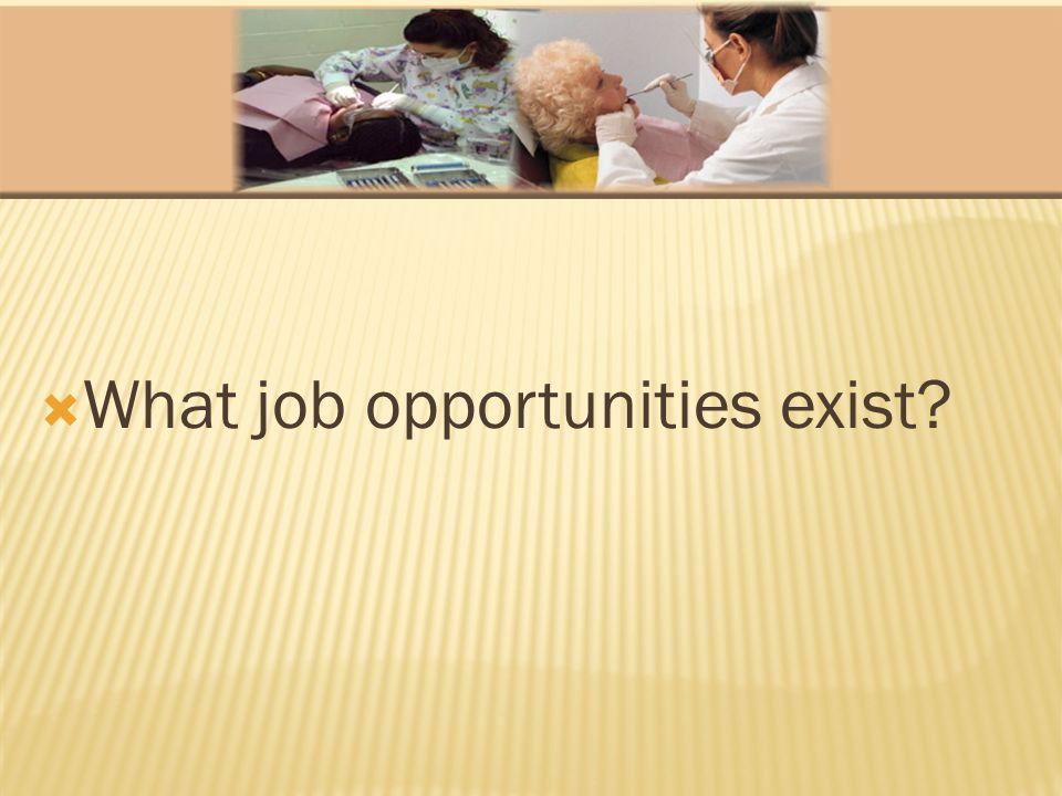  What job opportunities exist