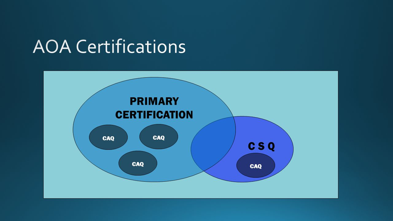 C S Q PRIMARY CERTIFICATION CAQ