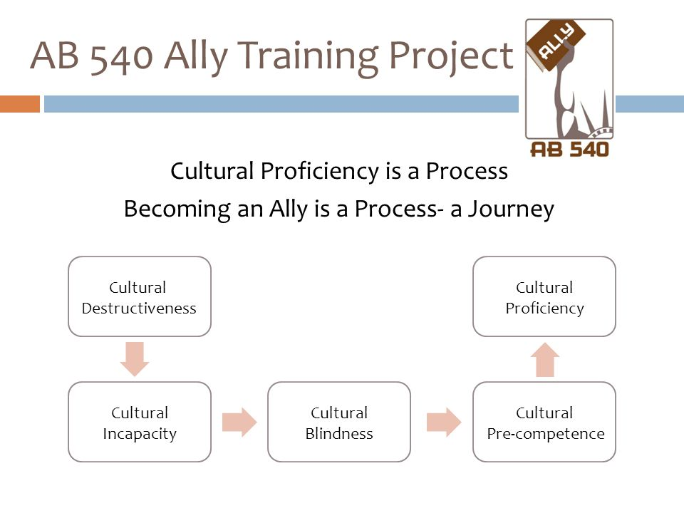 Cultural Proficiency is a Process Becoming an Ally is a Process- a Journey AB 540 Ally Training Project Cultural Destructiveness Cultural Incapacity C