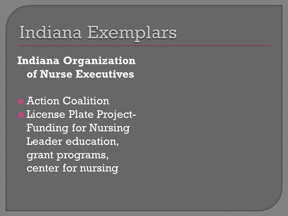 Indiana Organization of Nurse Executives  Action Coalition  License Plate Project- Funding for Nursing Leader education, grant programs, center for nursing