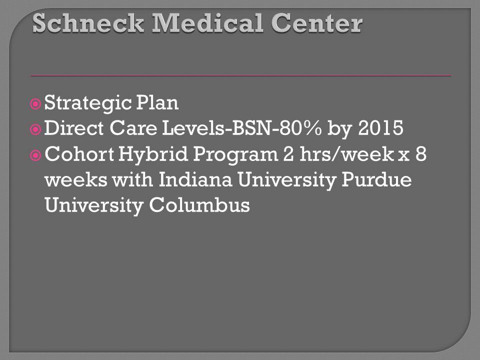  Strategic Plan  Direct Care Levels-BSN-80% by 2015  Cohort Hybrid Program 2 hrs/week x 8 weeks with Indiana University Purdue University Columbus