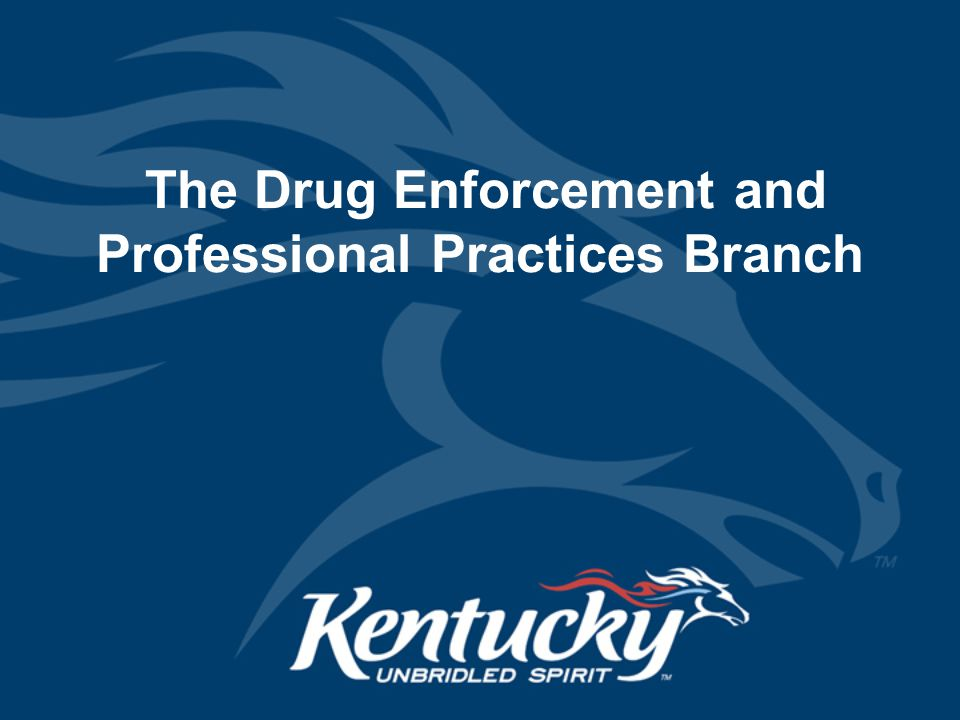 The Drug Enforcement and Professional Practices Branch