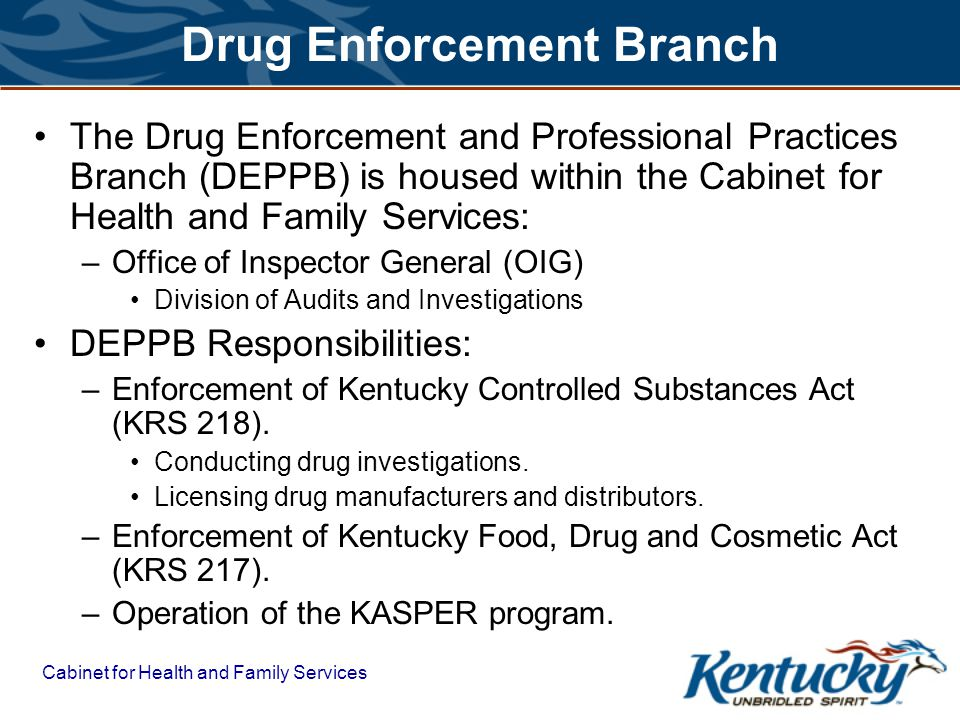 Drug Enforcement Branch The Drug Enforcement and Professional Practices Branch (DEPPB) is housed within the Cabinet for Health and Family Services: –Office of Inspector General (OIG) Division of Audits and Investigations DEPPB Responsibilities: –Enforcement of Kentucky Controlled Substances Act (KRS 218).