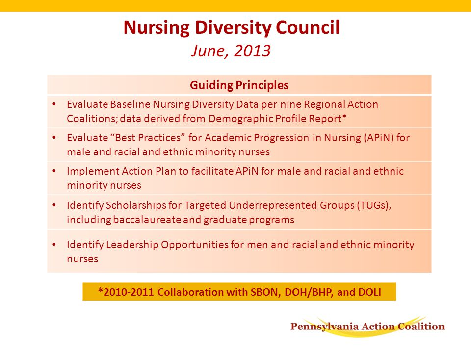 Nursing Diversity Council June, 2013 Guiding Principles Evaluate Baseline Nursing Diversity Data per nine Regional Action Coalitions; data derived from Demographic Profile Report* Evaluate Best Practices for Academic Progression in Nursing (APiN) for male and racial and ethnic minority nurses Implement Action Plan to facilitate APiN for male and racial and ethnic minority nurses Identify Scholarships for Targeted Underrepresented Groups (TUGs), including baccalaureate and graduate programs Identify Leadership Opportunities for men and racial and ethnic minority nurses *2010-2011 Collaboration with SBON, DOH/BHP, and DOLI