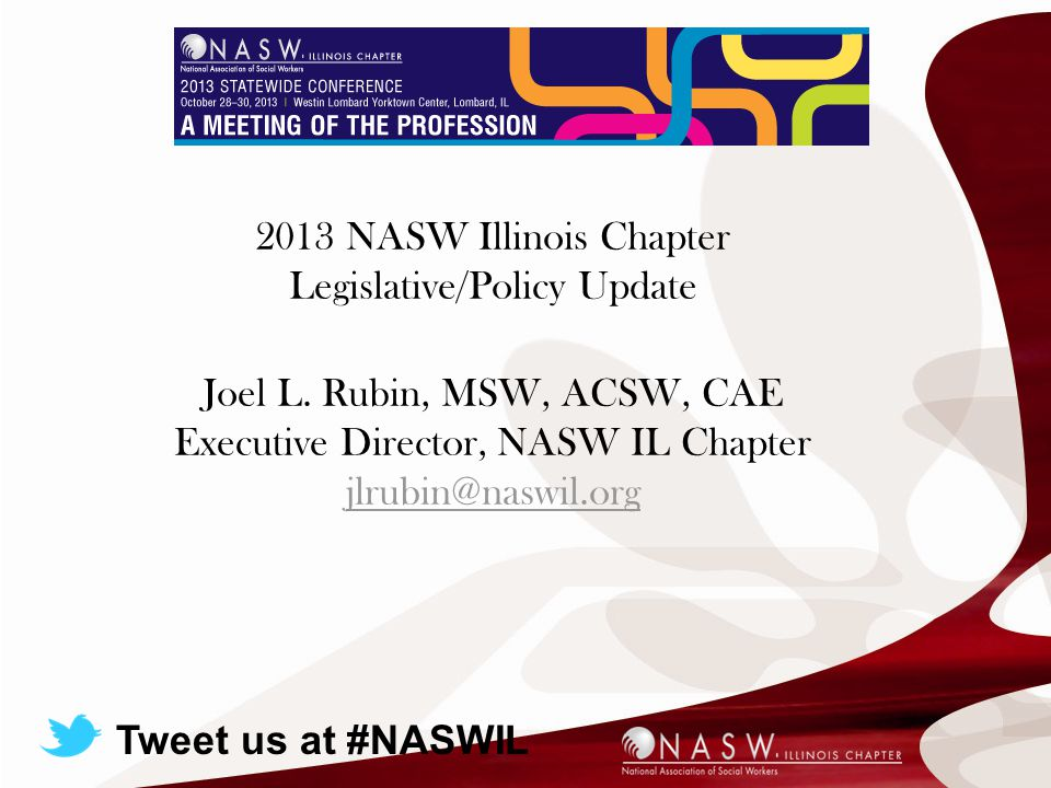 Today's Presentation 2013 NASW Illinois Chapter Legislative/Policy Update Joel L.
