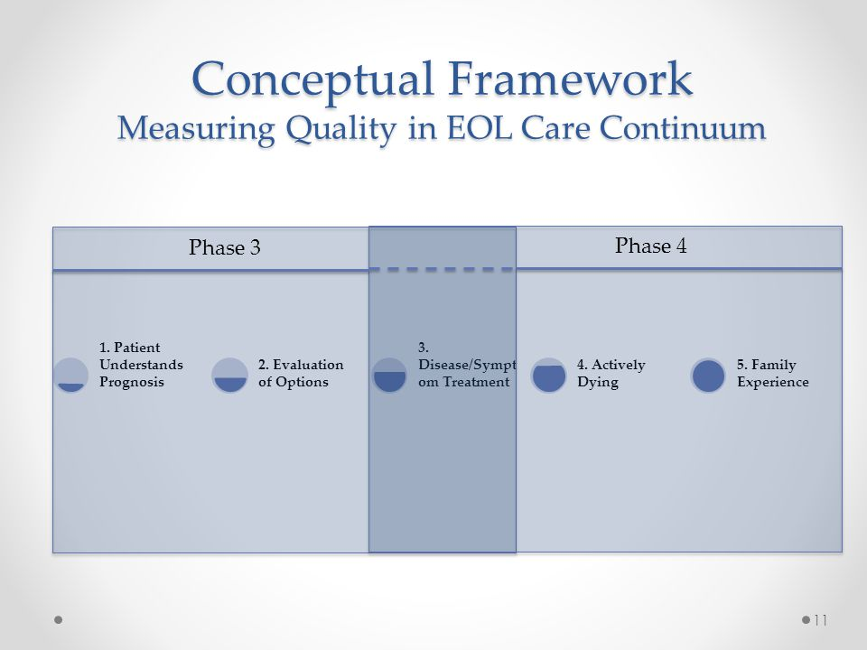 Conceptual Framework Measuring Quality in EOL Care Continuum 11 1.