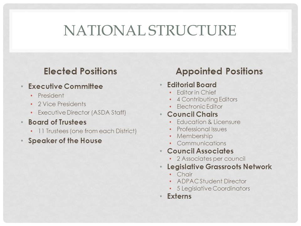 NATIONAL STRUCTURE Elected Positions Executive Committee President 2 Vice Presidents Executive Director (ASDA Staff) Board of Trustees 11 Trustees (on