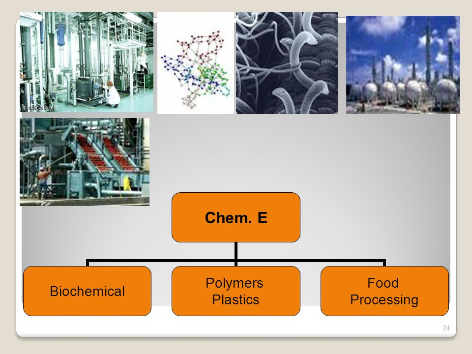 . Chem. E Biochemical Polymers Plastics Food Processing 24