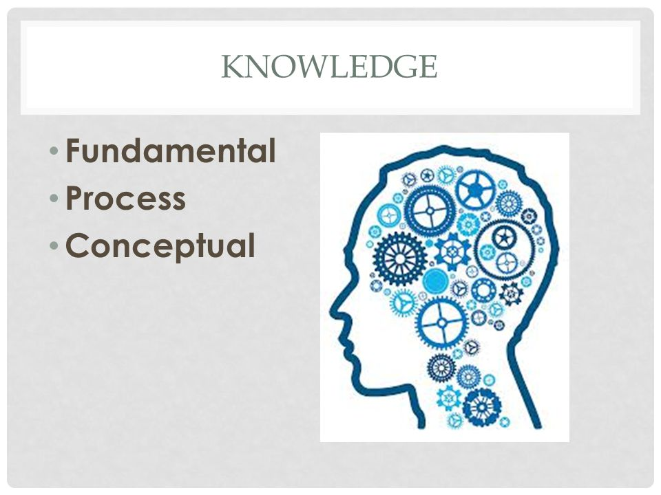 KNOWLEDGE Fundamental Process Conceptual