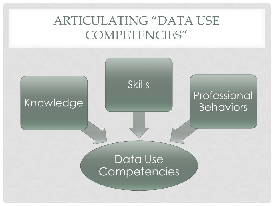 ARTICULATING DATA USE COMPETENCIES Data Use Competencies KnowledgeSkills Professional Behaviors