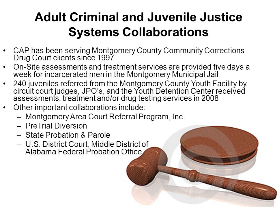 Adult Criminal and Juvenile Justice Systems Collaborations CAP has been serving Montgomery County Community Corrections Drug Court clients since 1997 On-Site assessments and treatment services are provided five days a week for incarcerated men in the Montgomery Municipal Jail 240 juveniles referred from the Montgomery County Youth Facility by circuit court judges, JPO's, and the Youth Detention Center received assessments, treatment and/or drug testing services in 2008 Other important collaborations include: –Montgomery Area Court Referral Program, Inc.