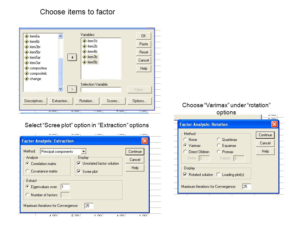 "Choose items to factor Select ""Scree plot"" option in ""Extraction"" options Choose ""Varimax"" under ""rotation"" options"