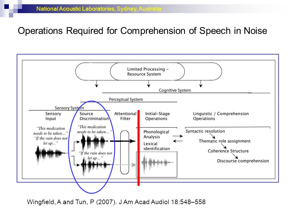 National Acoustic Laboratories, Sydney, Australia Operations Required for Comprehension of Speech in Noise Wingfield, A and Tun, P (2007).
