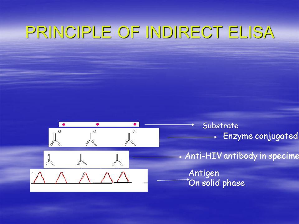 PRINCIPLE OF INDIRECT ELISA Enzyme conjugated Anti-HIV antibody in specimen Antigen On solid phase Substrate