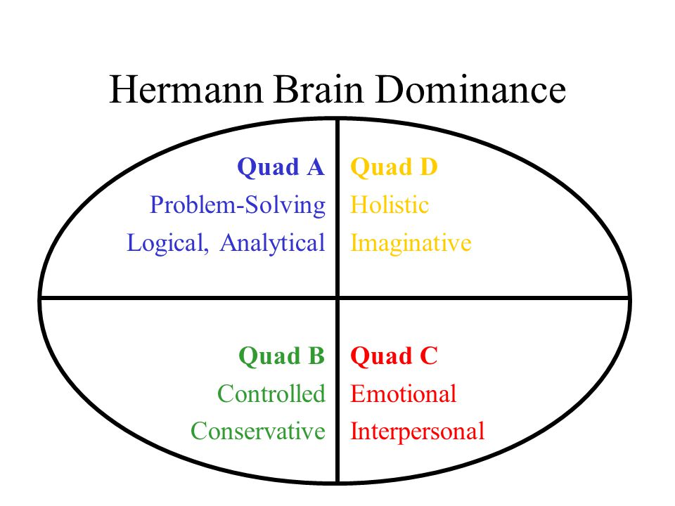 Hermann Brain Dominance Quad A Problem-Solving Logical, Analytical Quad B Controlled Conservative Quad D Holistic Imaginative Quad C Emotional Interpe