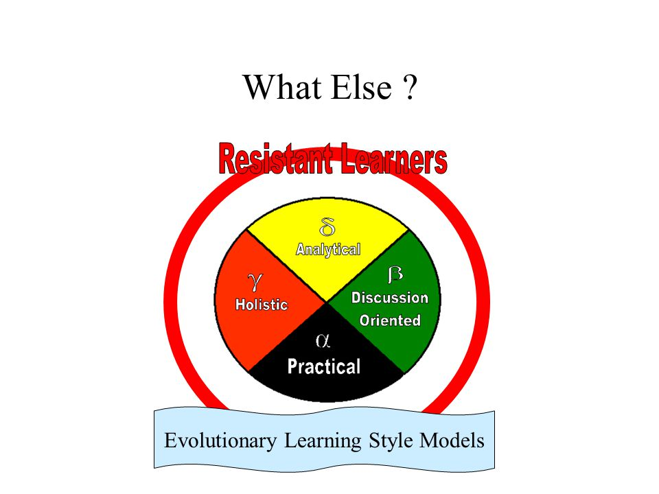 What Else ? Evolutionary Learning Style Models
