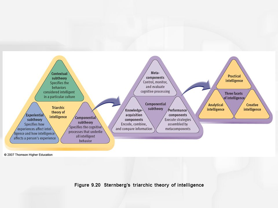 Figure 9.20 Sternberg's triarchic theory of intelligence