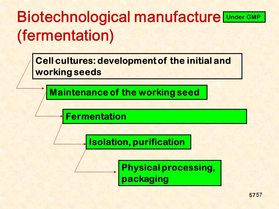57 Biotechnological manufacture (fermentation) Cell cultures: development of the initial and working seeds Maintenance of the working seed Fermentatio