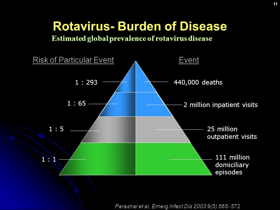 11 Rotavirus- Burden of Disease Estimated global prevalence of rotavirus disease Parashar et al, Emerg Infect Dis 2003 9(5) 565 – 572 25 million outpatient visits 111 million domiciliary episodes 1 : 293 1 : 65 EventRisk of Particular Event 440,000 deaths 2 million inpatient visits 1 : 5 1 : 1