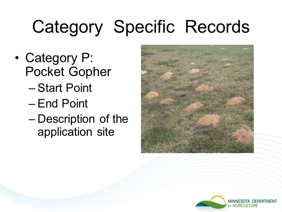 Category Specific Records Category P: Pocket Gopher –Start Point –End Point –Description of the application site