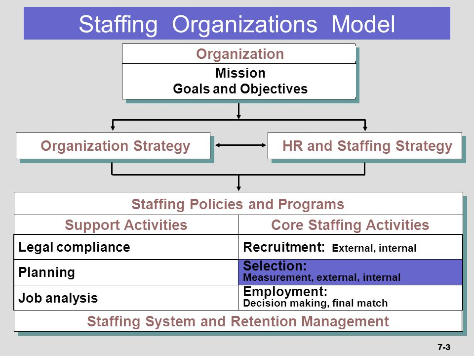 Organization Strategy HR and Staffing Strategy Staffing Policies and Programs Staffing System and Retention Management Support Activities Legal compli