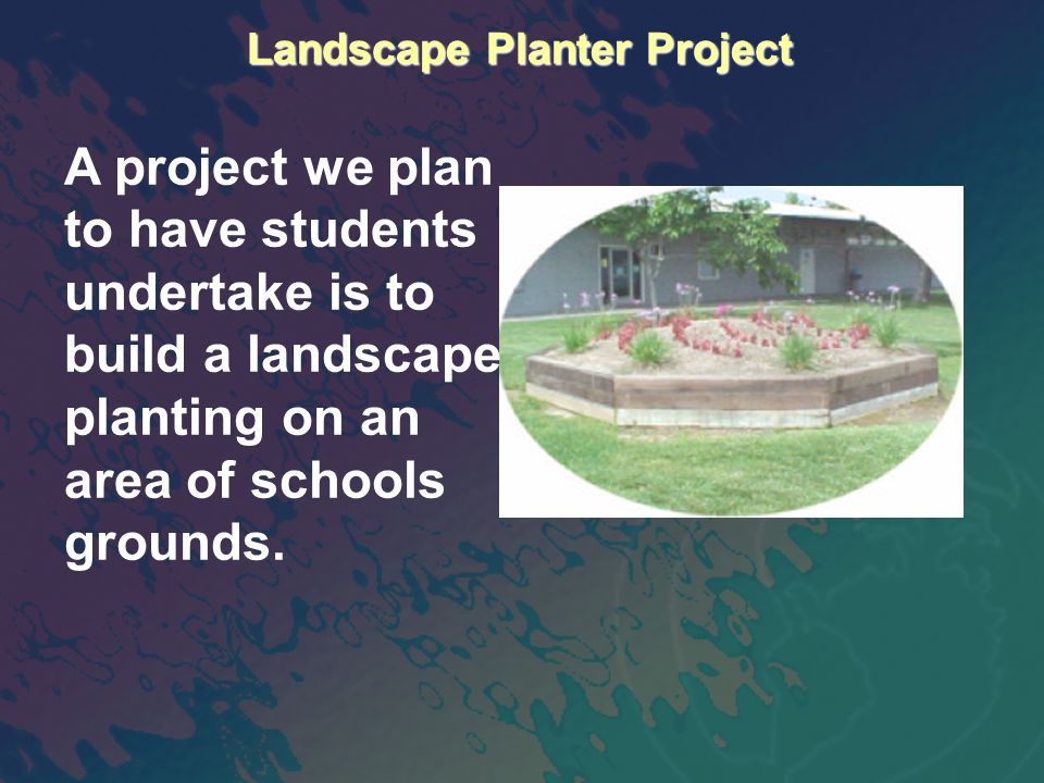 Landscape Planter Project A project we plan to have students undertake is to build a landscape planting on an area of schools grounds.
